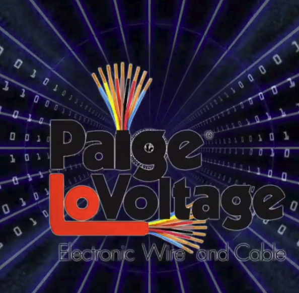 Paige electronics 3D home page animation